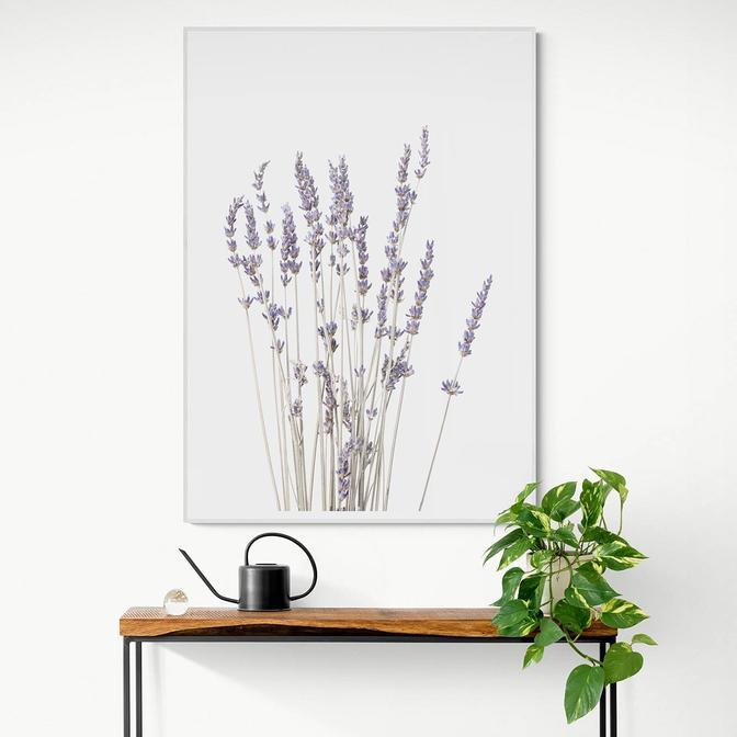 Lavanta Çerçeveli Tablo Beyaz (21x30 cm)